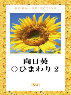 向日葵◇ひまわり2