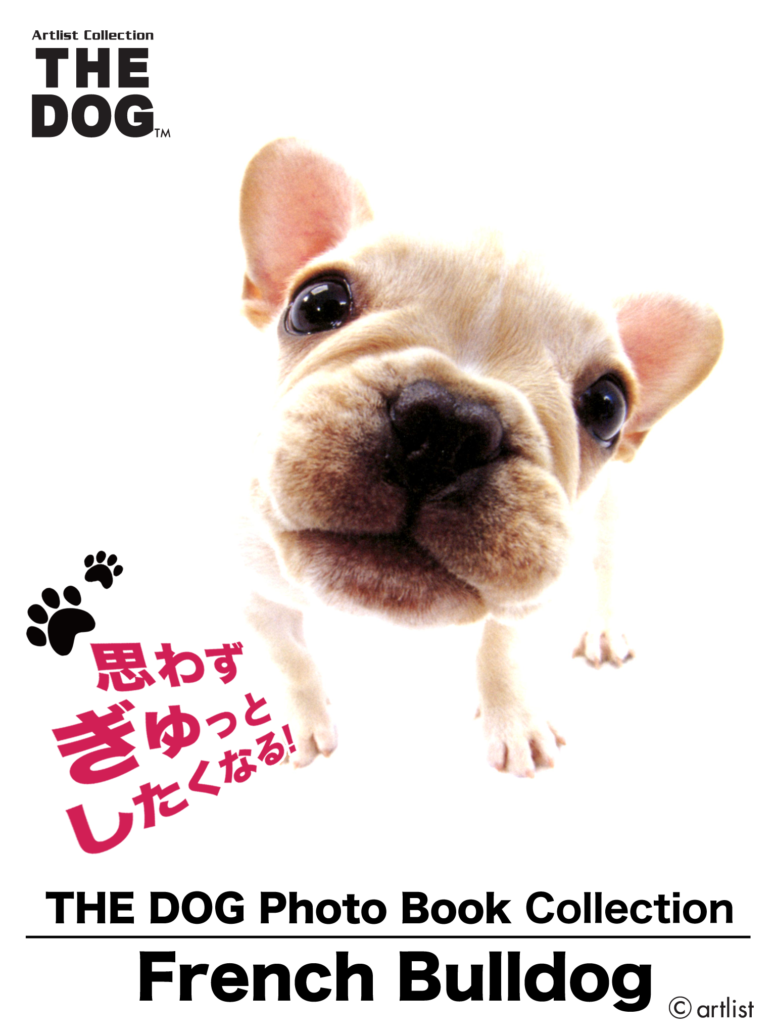 THE DOG Photo Book Collection French Bulldog