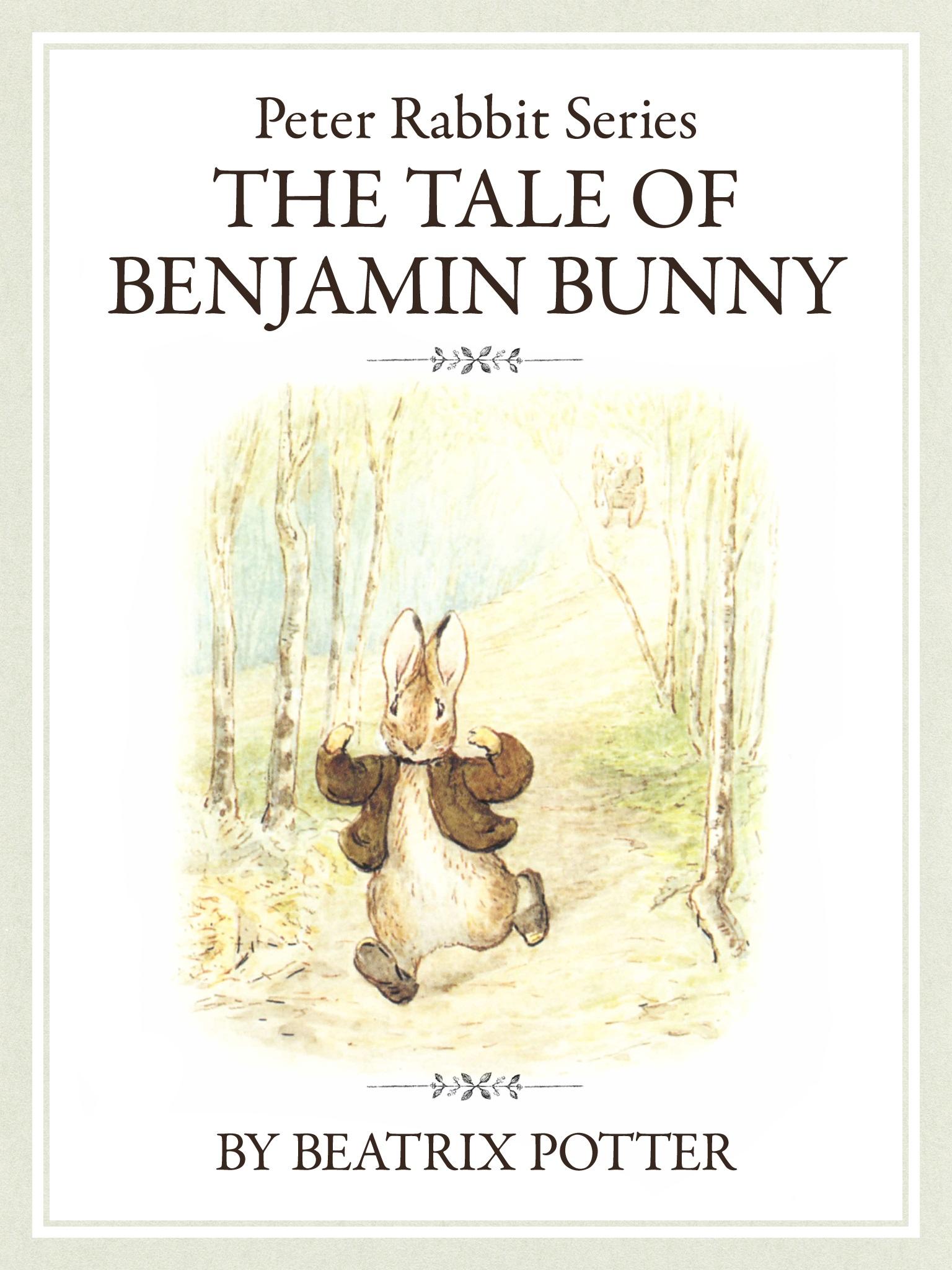 ザ ピーターラビットシリーズ2 THE TALE OF BENJAMIN BUNNY