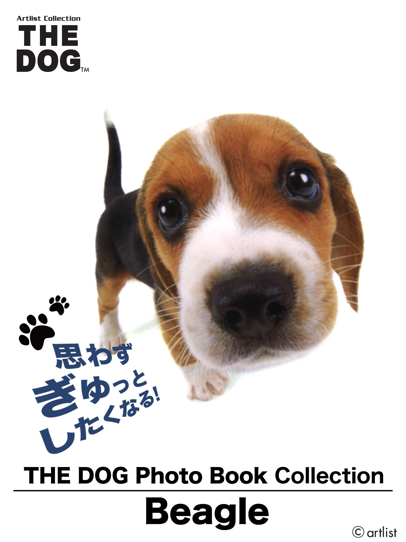 THE DOG Photo Book Collection Beagle