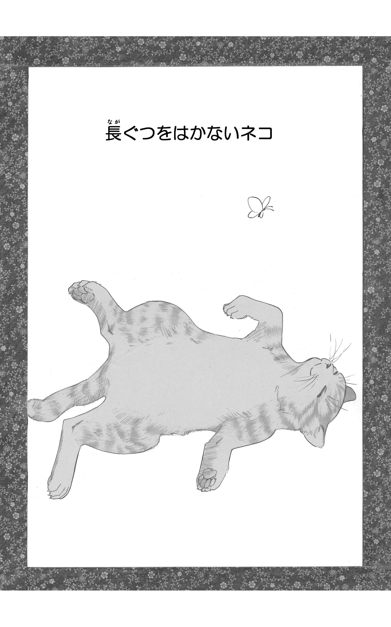 長ぐつをはかないネコ