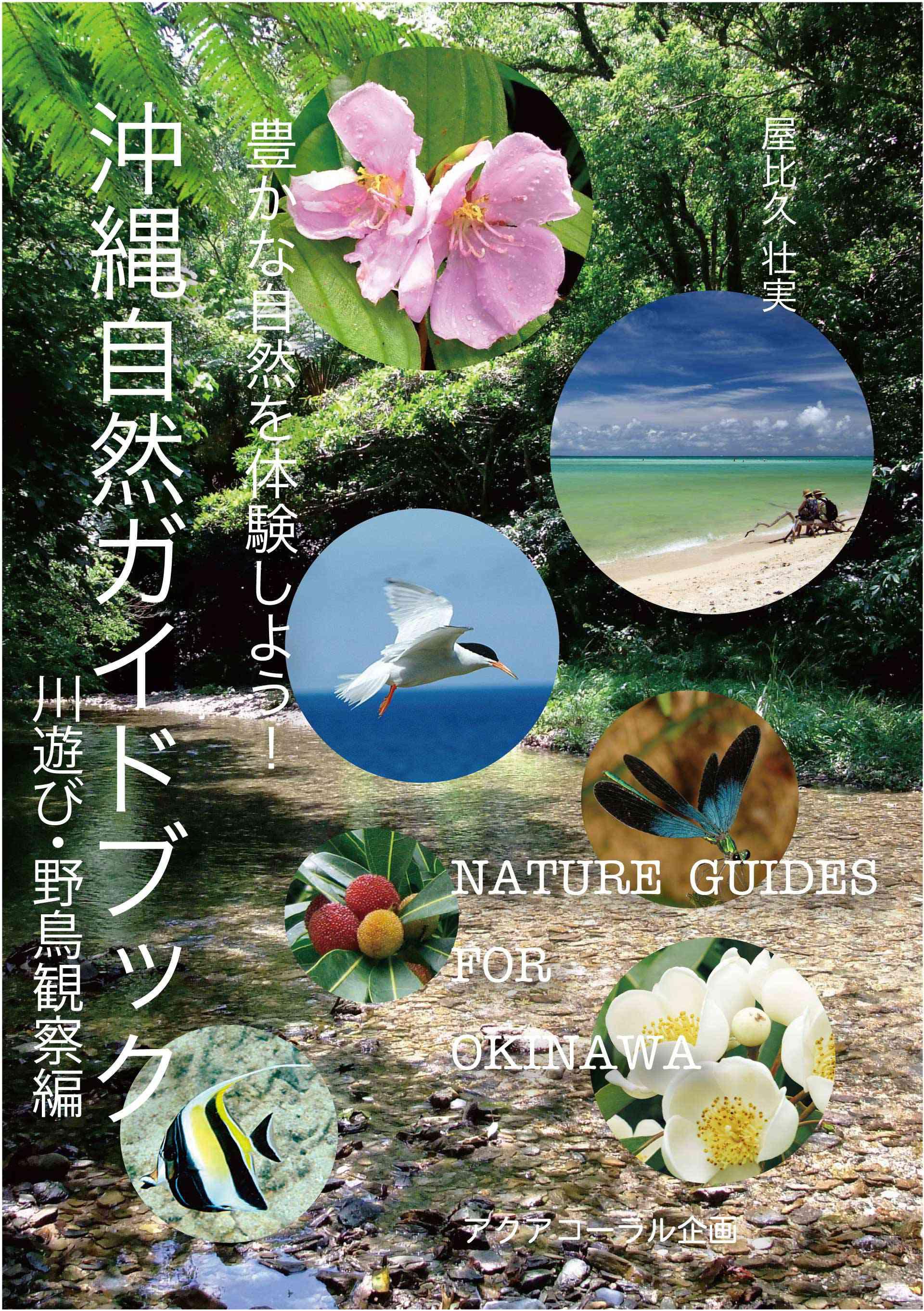 沖縄自然ガイドブック 豊かな自然を体験しよう!川遊び・野鳥観察編