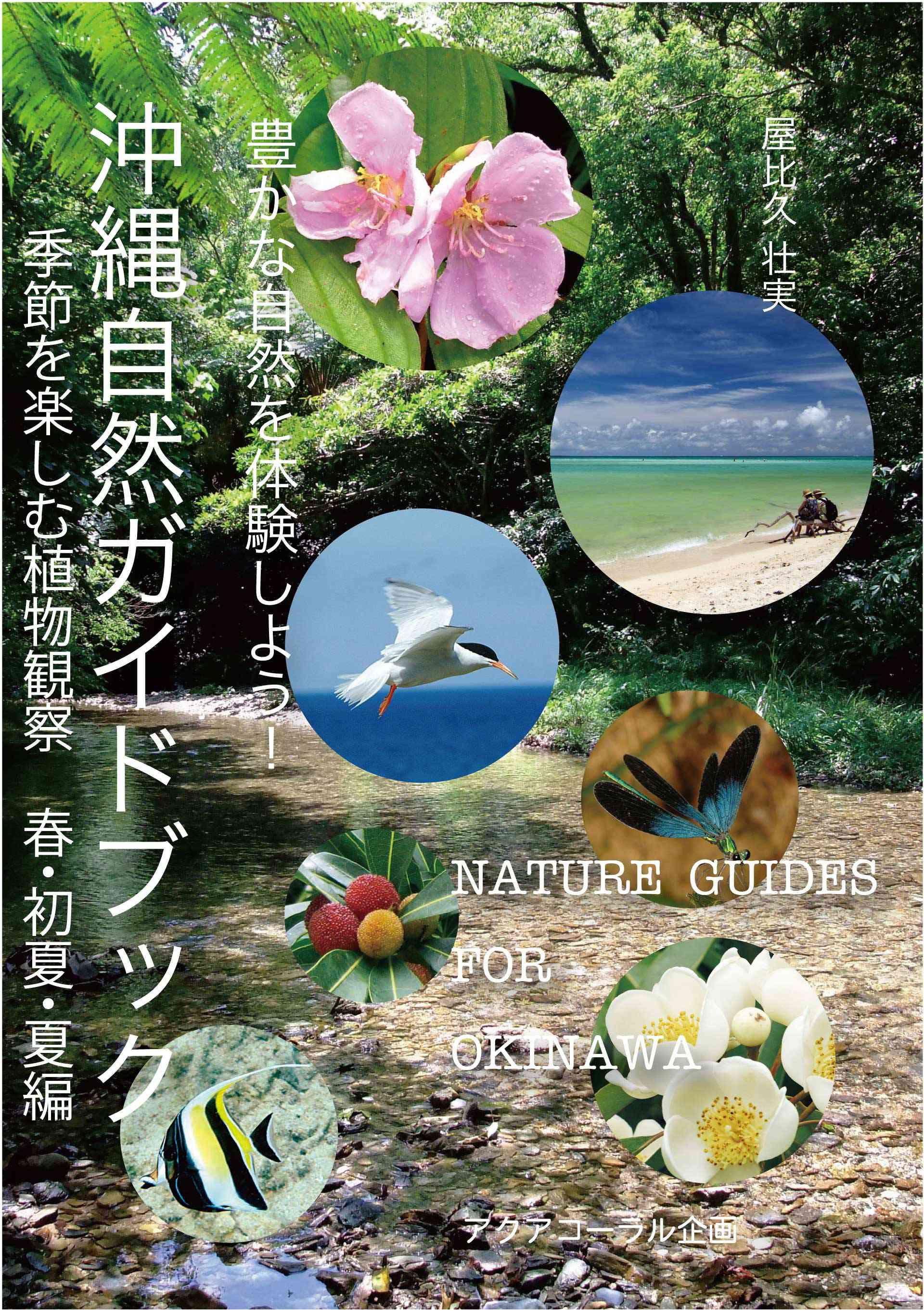 沖縄自然ガイドブック 豊かな自然を体験しよう!季節を楽しむ植物観察 春・初夏・夏編